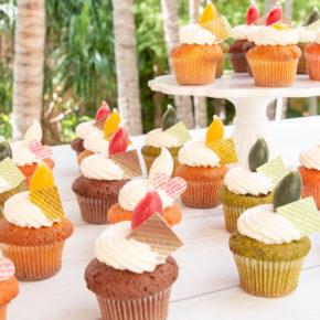 Petite Cup Cake Fair! |9月はプチカップケーキフェア!