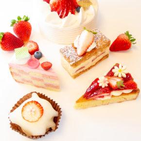 🍓 Strawberry Fair 🍓 | 🍓 6月はイチゴフェア 🍓